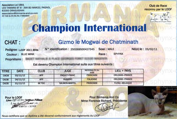 ch-inter-gizmo_0