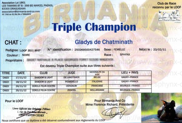3xch-gladys